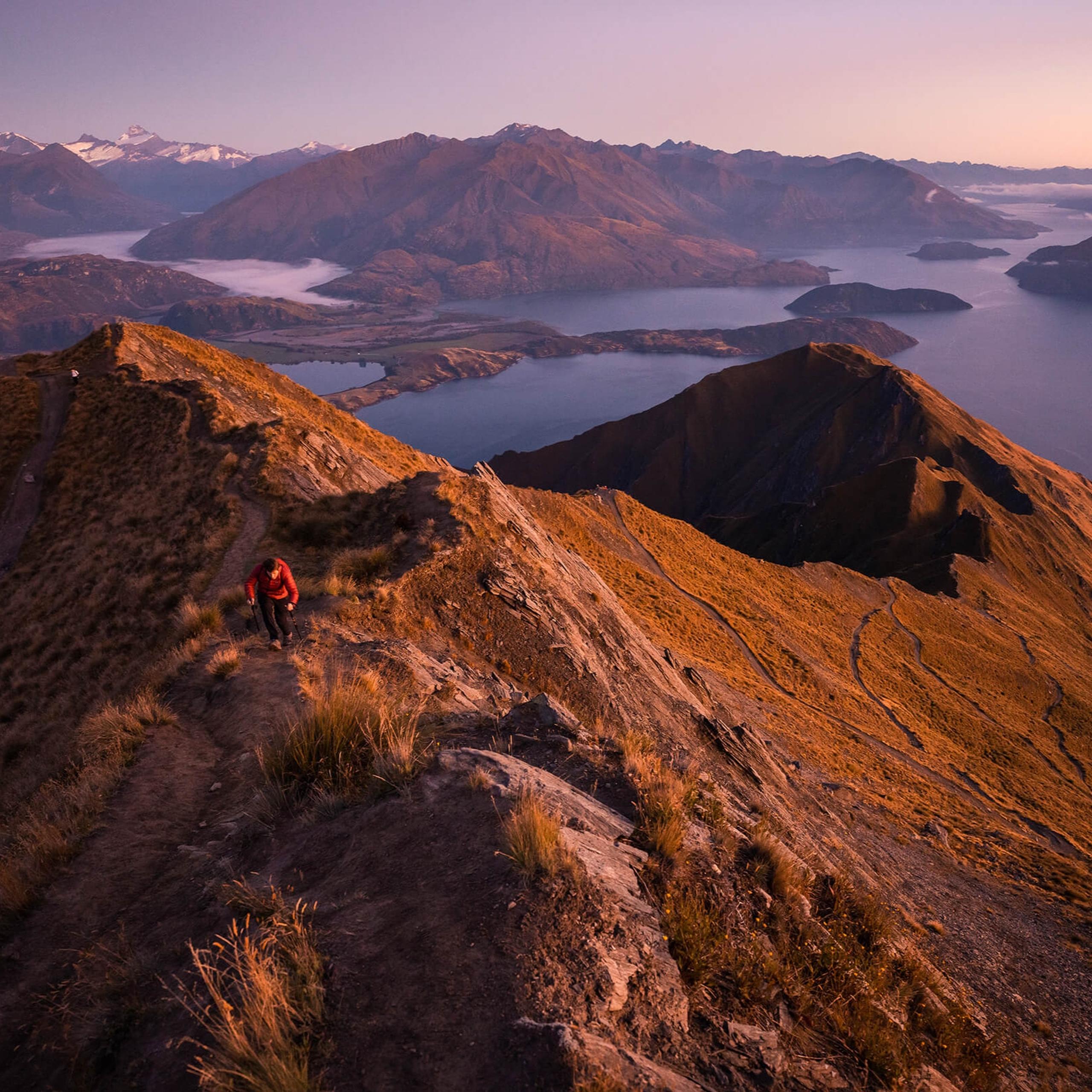 Adam Weist | Adventuring Through the Subtropical Rainforests and Active Volcanoes of New Zealand