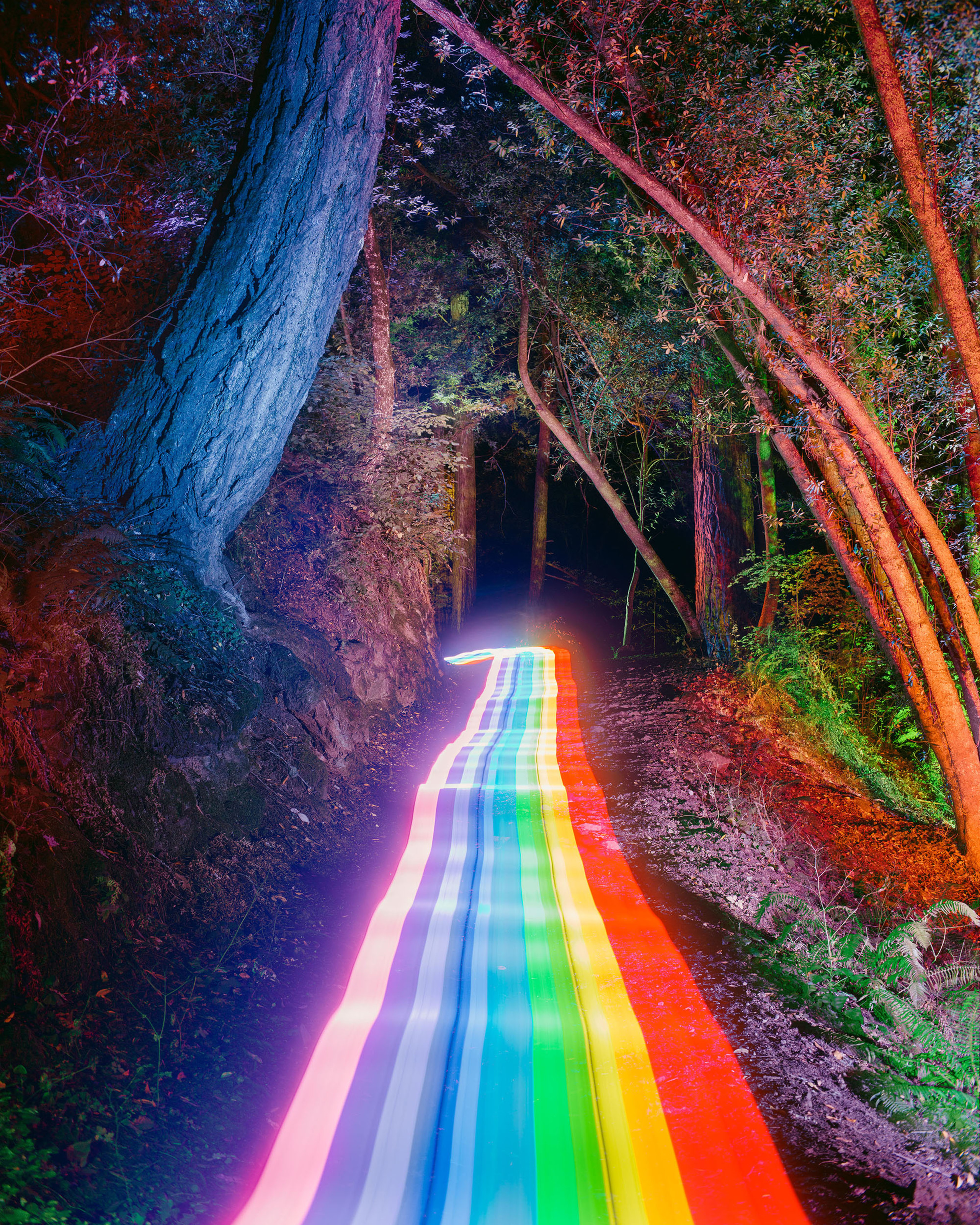 Daniel Mercadante | The Rainbow Road Series