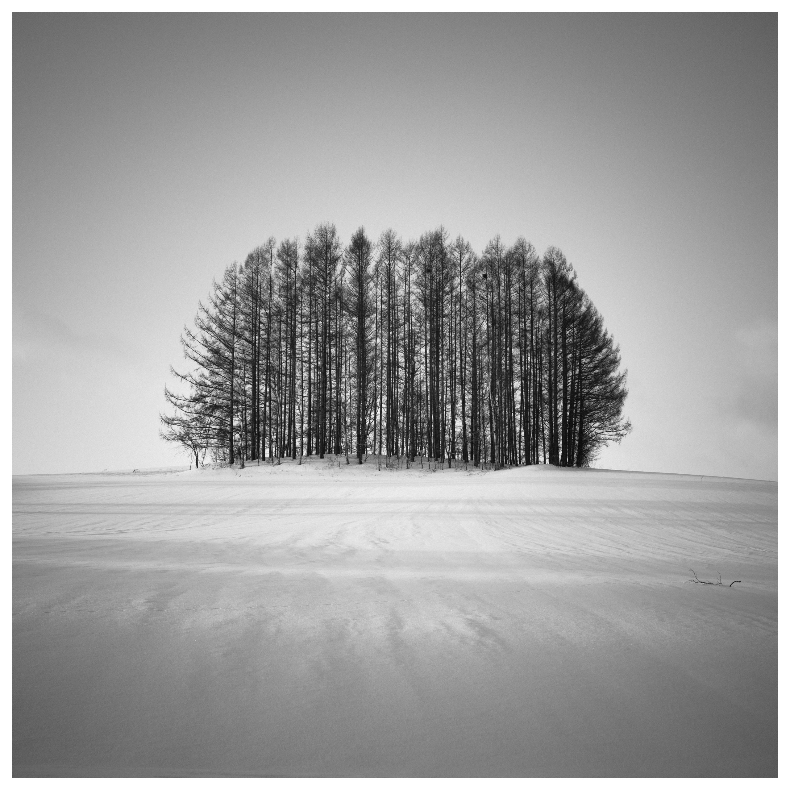 Hengki Koentjoro | Monochromatic Minimalism with the X1D